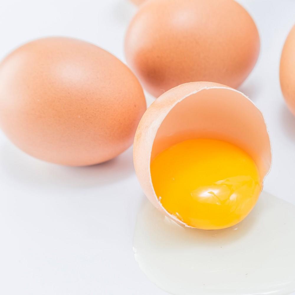 Yumurta Kabuğu Mucizesi!
